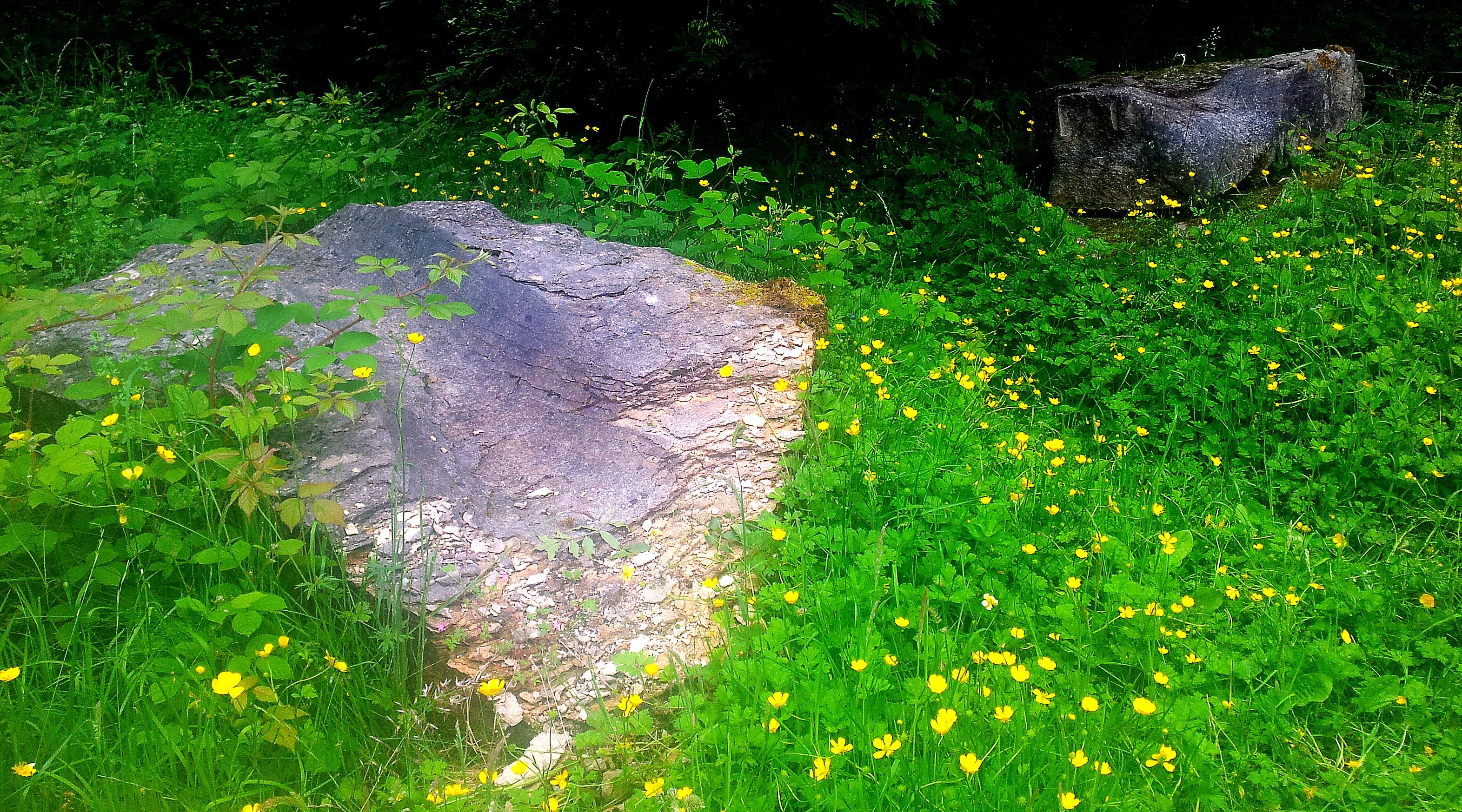 'Passage' Eden Benchmarks, Stenkrith Park, Kirkby Stephen. Crumbling.