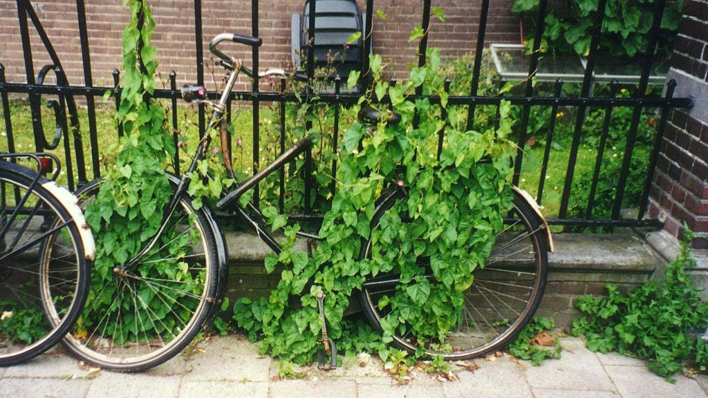 Busy bicycle made silent - The Netherlands 1999.