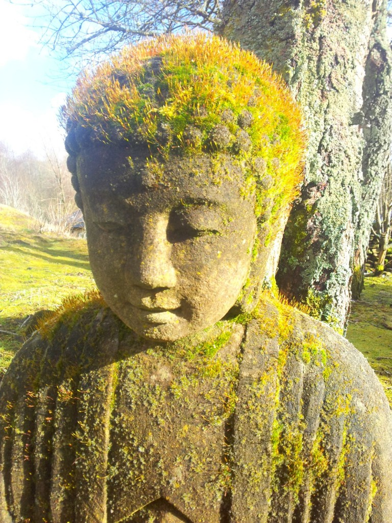 A Buddha conveys stillness. While sitting and while walking.