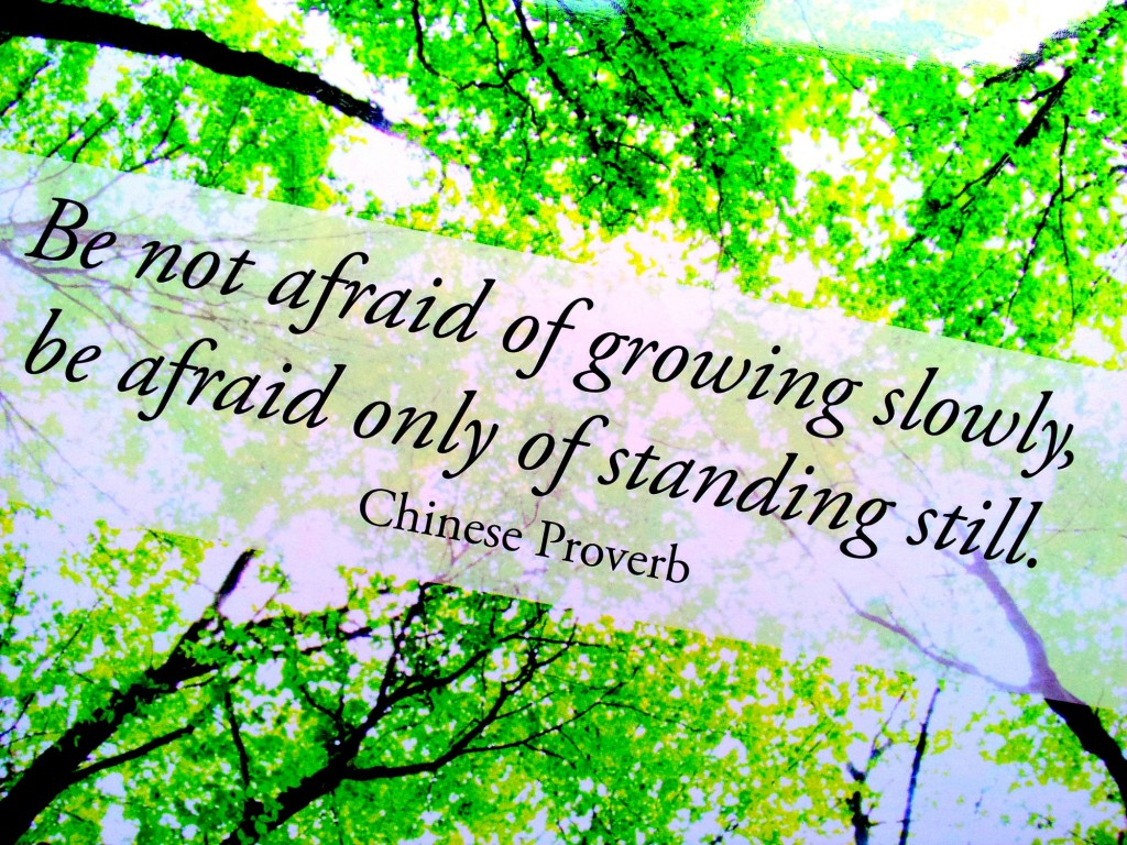 Be not afraid - slow or (seeming to) stand still.