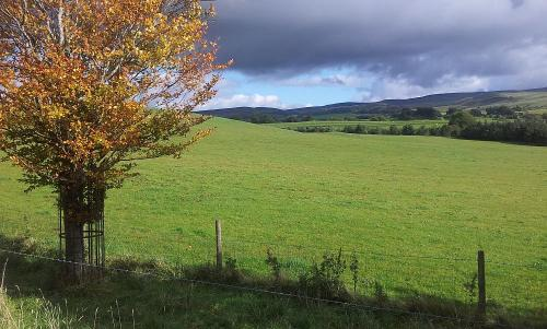 Autumn_Fields_early_October_Eden_Valley.jpg