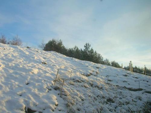 snow_on_the_hill01.jpg